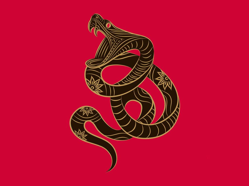 Гороскоп для Змеи на 2019 год