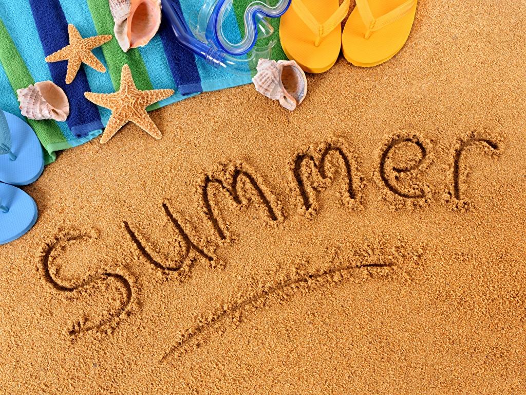 Летние каникулы 2019 учебного года