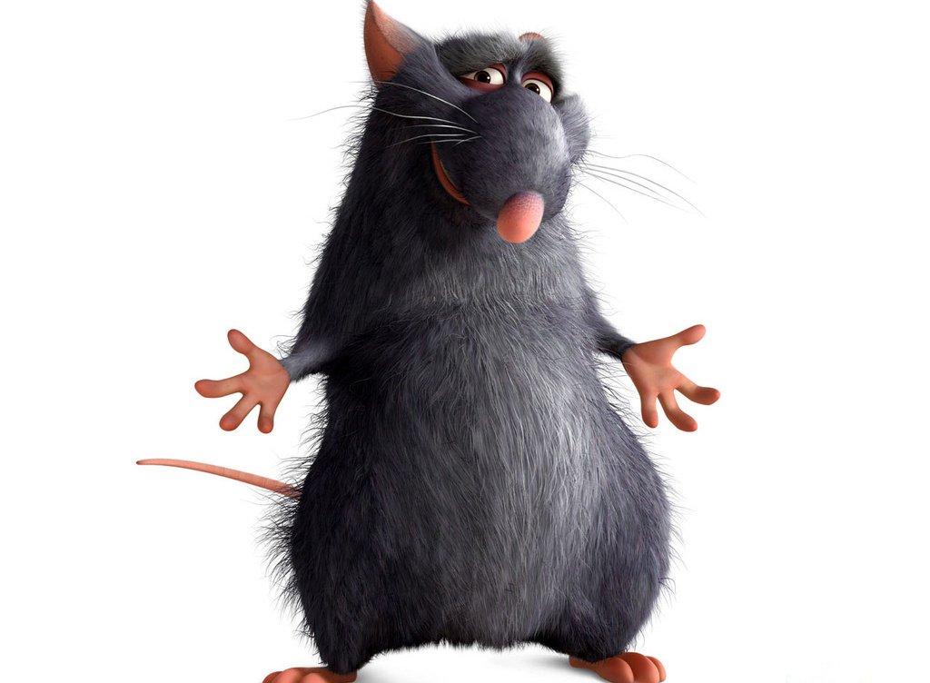 Гороскоп для Крысы на 2019 год