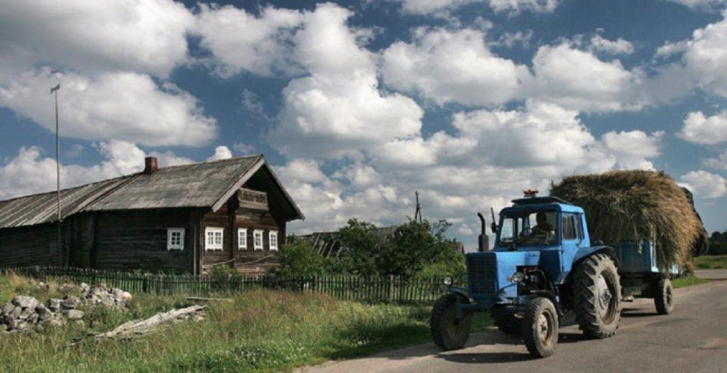 2019 год станет Годом села в России