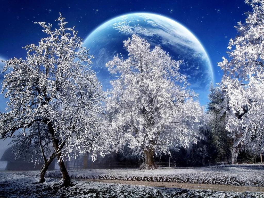 Зимние каникулы 2019 года