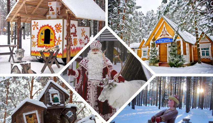 Новый год в Беловежской Пуще 2019