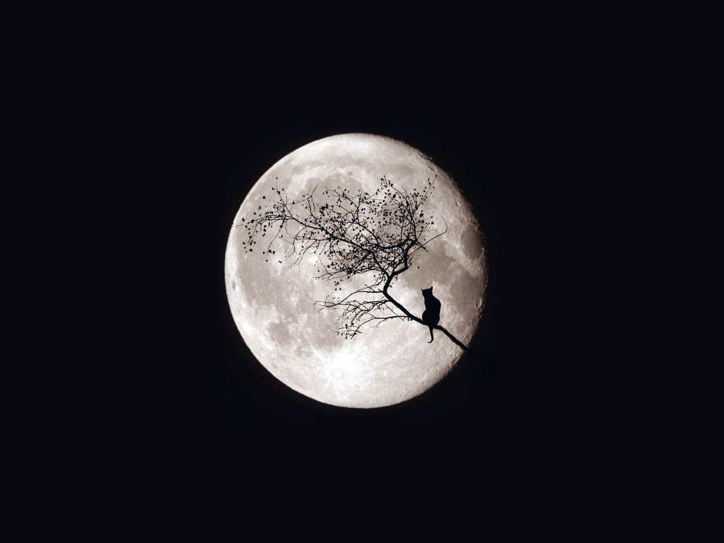 Полнолуние в июне 2019 года, месячный лунный цикл