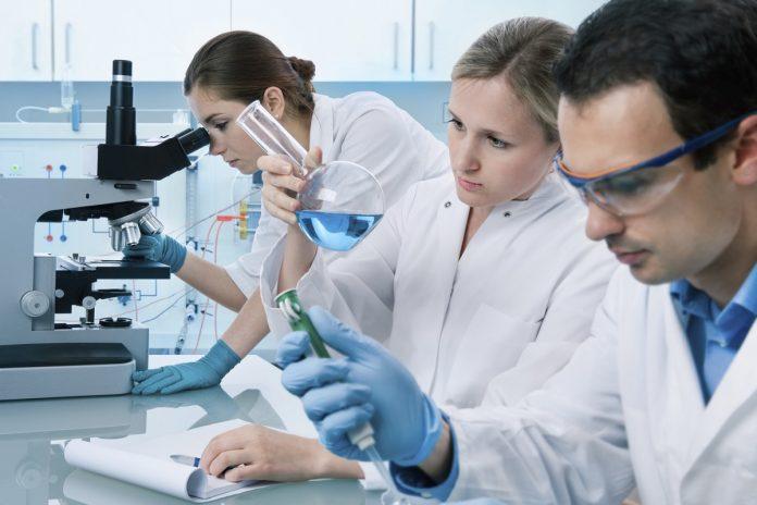 Зарплата научных сотрудников в 2019 году