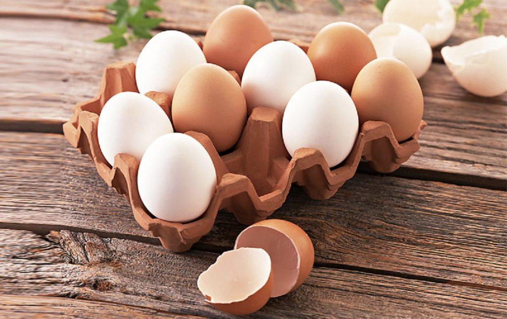 Прогноз цен на яйца в 2019 году